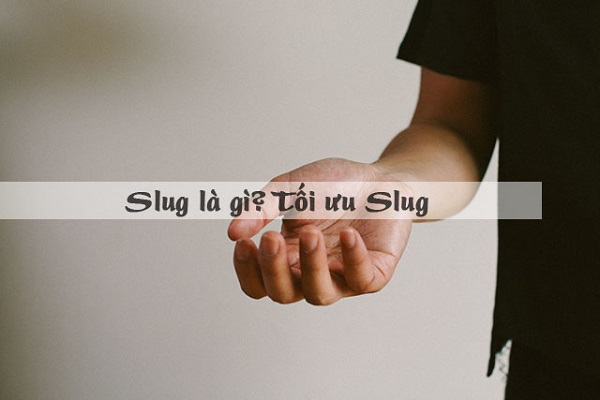 Tối ưu Slug đạt chuẩn SEO dễ dàng