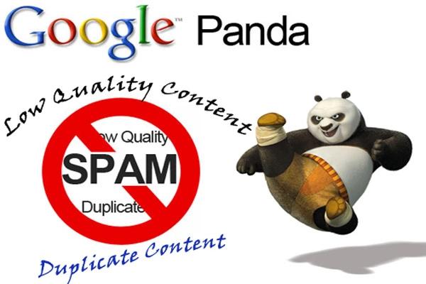 Giải mã những bí mật phía sau thuật toán Google Panda Back