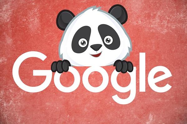 Panda back là gì?