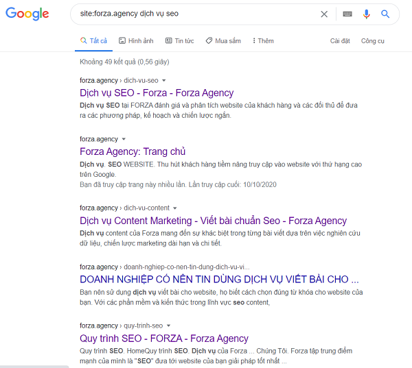 site:forza.agency dịch vụ seo