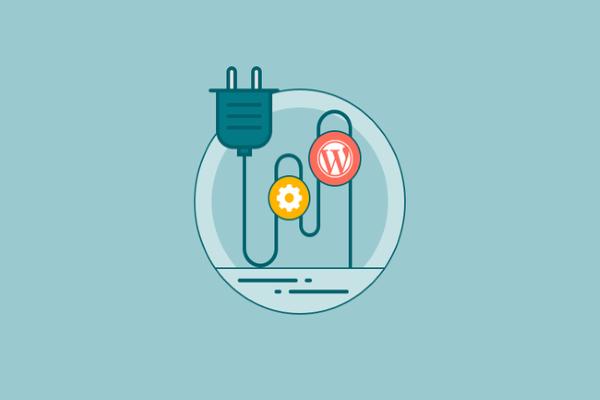 Tính năng hỗ trợ của Plug in là gì?
