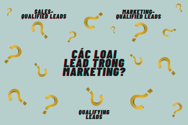 Marketing bao gồm những loại lead nào?