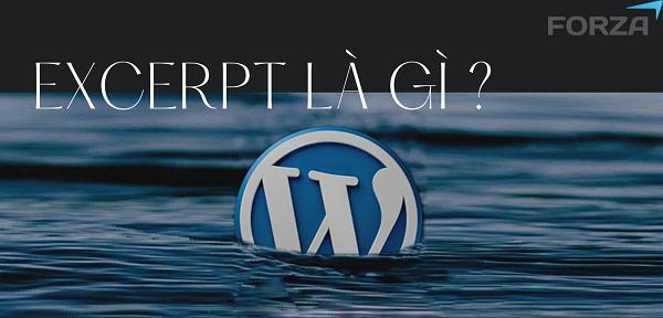 Excerpt là một tính năng trong WordPress.