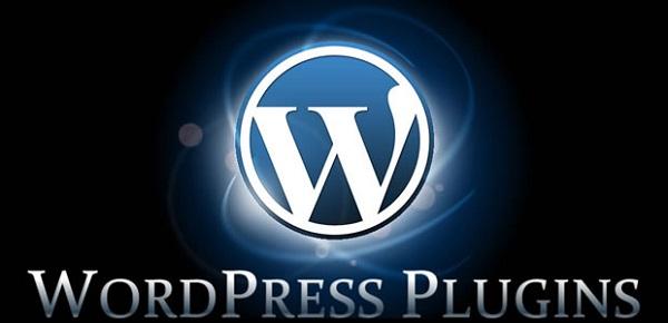 Plugin giúp website WordPress hoạt động trơn tru.
